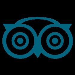 Icono tripadvisor